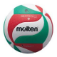 VOLLEY BALL V5M2501