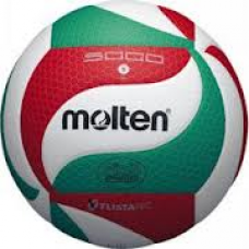 VOLLEY BALL V5M5000